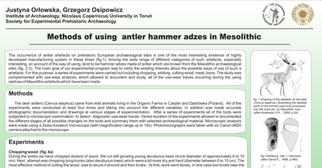 Methods of using antler hammer adzes in Mesolithic Orlowska and Ospiowicz