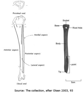 Manufacture and efficacy of bone spears copyright Inall and Sewpaul